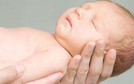 fitioterapia para bebes